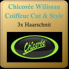 2017-Chicoree