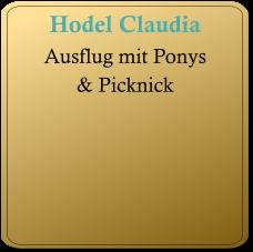 2017-Hodel